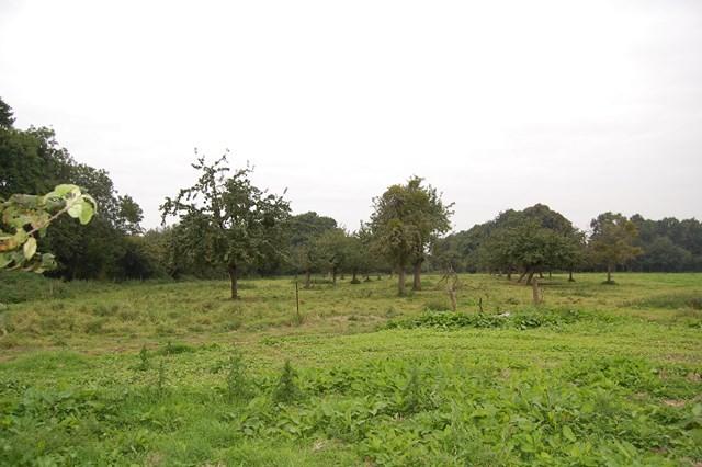 Agence Immobilière Terres et Demeures de Normandie, située à Cormeilles, 27260