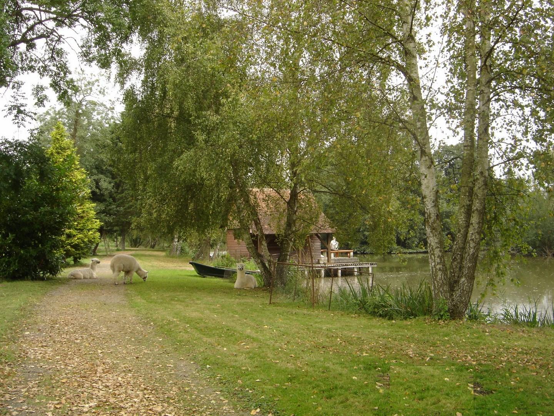 lisieux ventes ancien moulin r gion argentan orne 61 terres et demeures de normandie. Black Bedroom Furniture Sets. Home Design Ideas